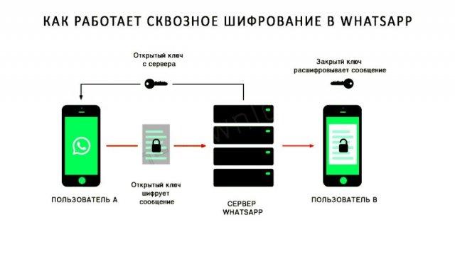 Шифрование сообщений в WhatsApp