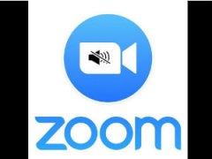Как настроить звук в Zoom